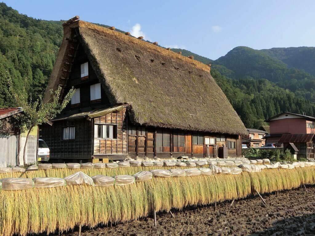 MastroKimono-viaggi-giappone-shirakawago-9