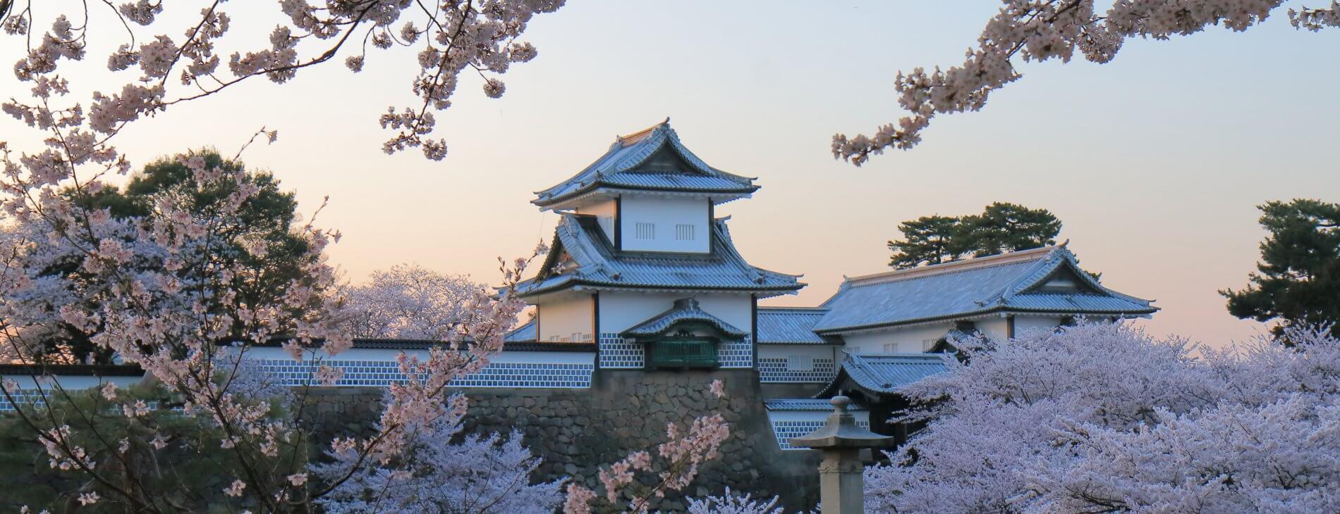 MastroKimono-Kanazawa-castle-cherry blossoms