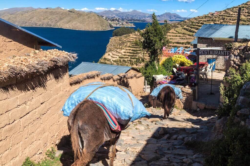 Mastroviaggiatore-bolivia-titicaca-Yumani-village-Isla-del-Sol