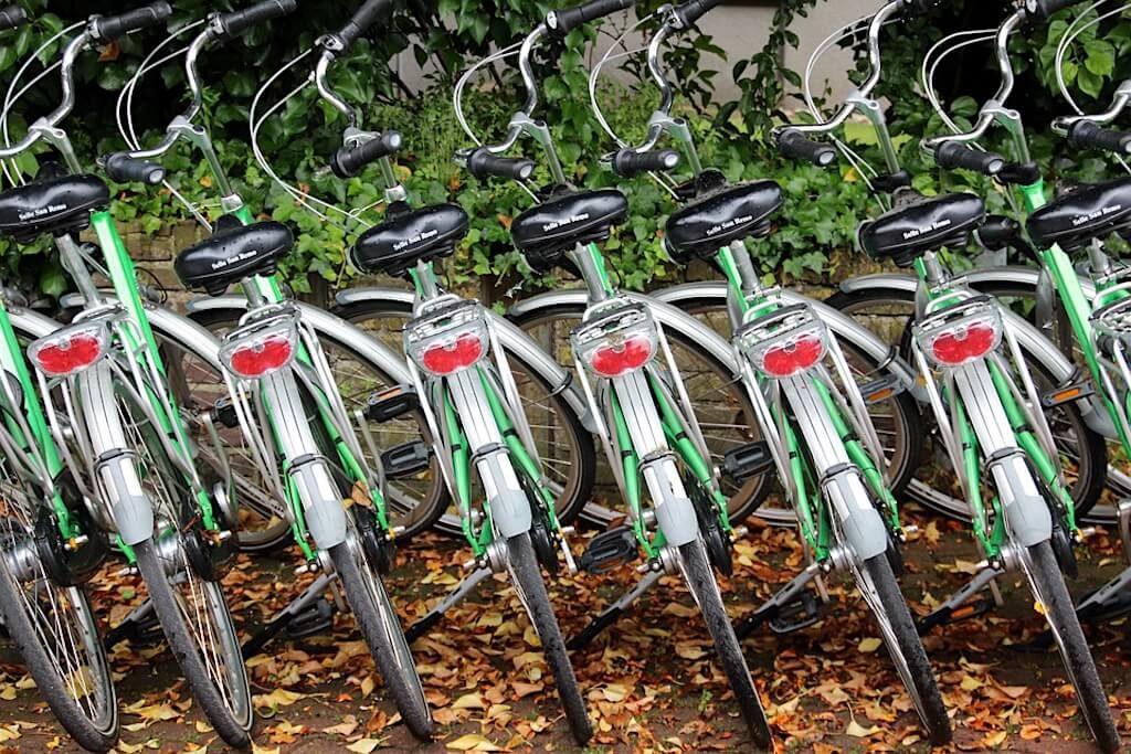 mastroPatagonico-cile-bike