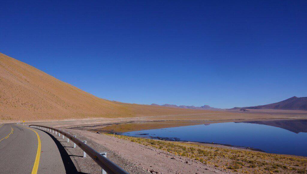 mastropatagonico-cile-antofagasta
