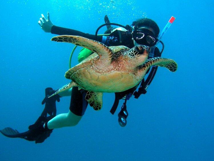 mastroviaggiatore_buoni-motivi-subacquea-03