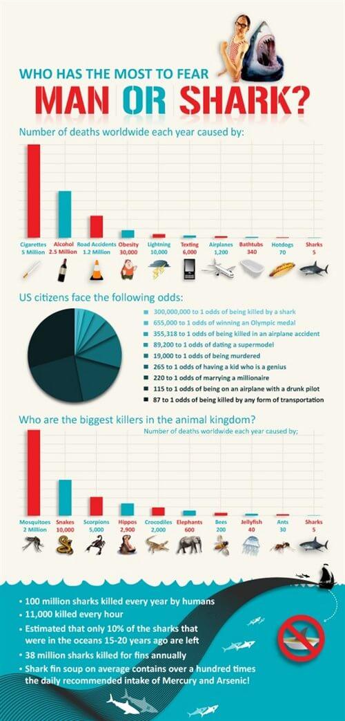 mastroviaggiatore_infografica-shark-4_500x1043