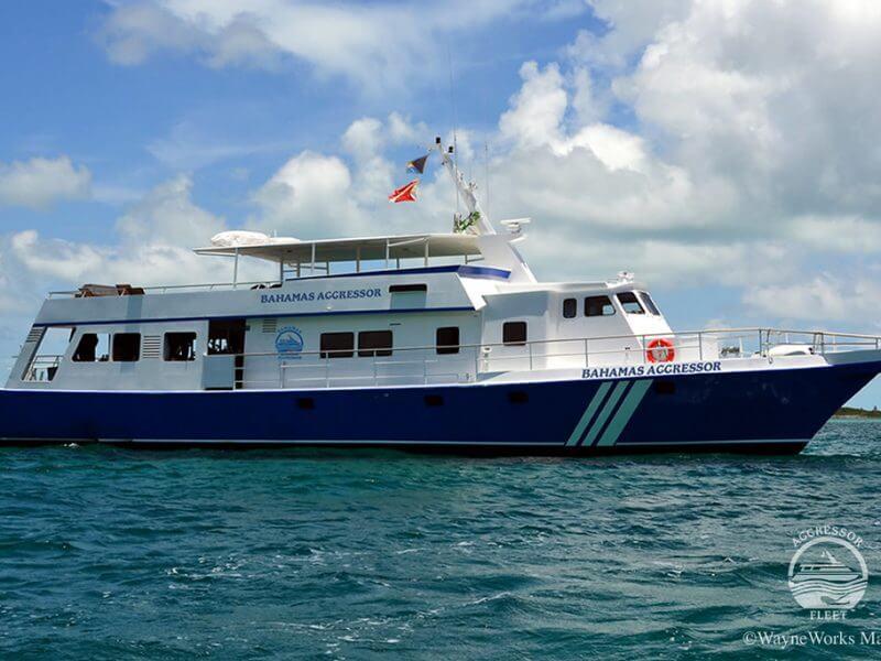 Nassau Bahamas sito di incontri