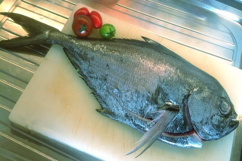 mastrosommerso-ricette-mare-pesce-castagna-2