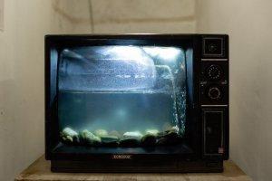 mastrosommerso-subacquei-davanti-allo-schermo-acquario-tv