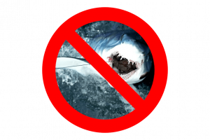 mastrosommerso-squalo-vietato